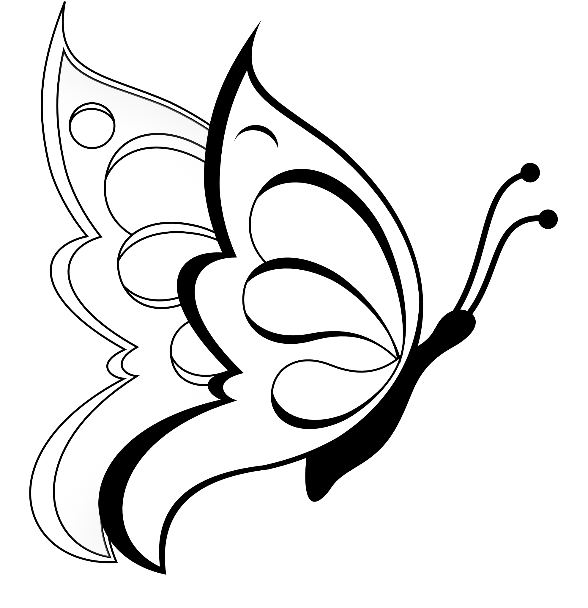 black line coloring pages butterfly clipart butterfly 19 black white line art