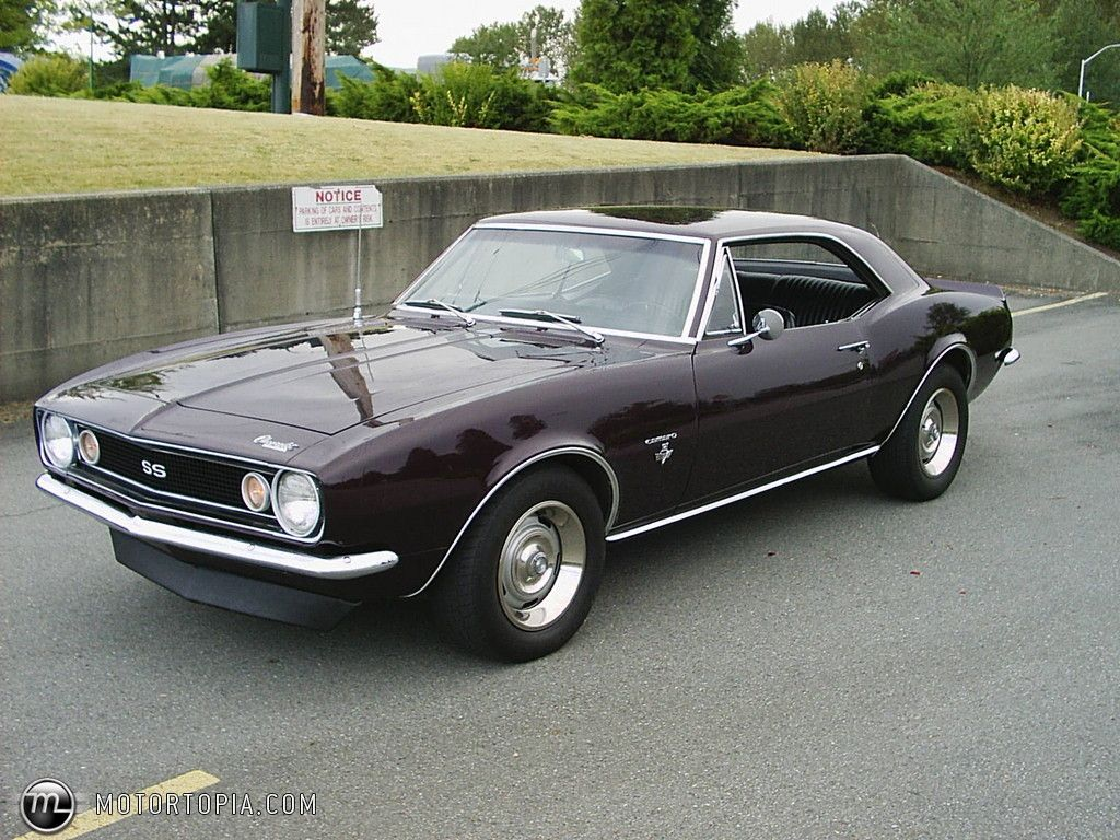 1967 chevrolet camaro ss some day i will have one