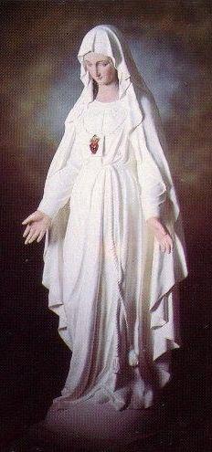 Nuestra Señora Del Escapulario Del Sagrado Corazón Piedad Salvación Confianza Conversión Y Salud Gracias D Blessed Mother Mary Mother Mary Blessed Mother