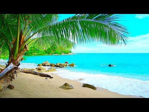 Tropical Island Beach Ambience Sound - Ocean Sounds and Singing