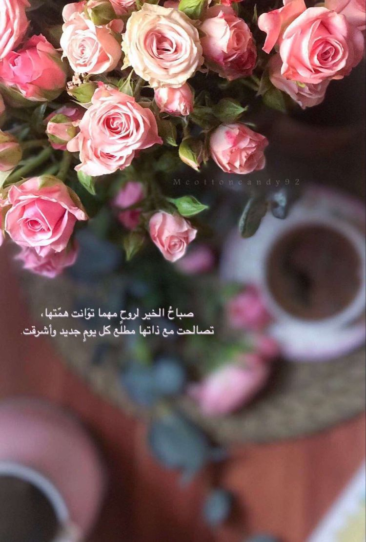 Pin By Mira Alshamsi On Quotes Moon And Star Quotes Arabic Quotes Flower Background Iphone