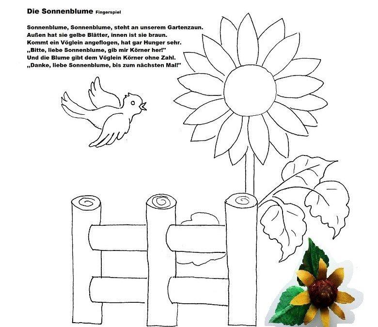 sprachförderung mit kindern  die sonnenblume