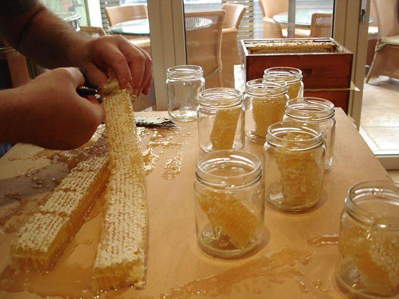 3 Ways To Harvest Honey Urban Farm3 Ways To Harvest