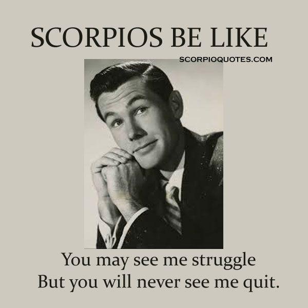 scorpio meme scorpio be like 4