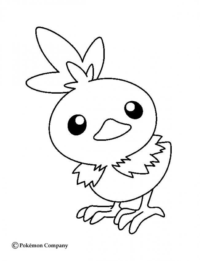 Little Torchic Coloring Pages More Fire Pokemon Coloring Sheets