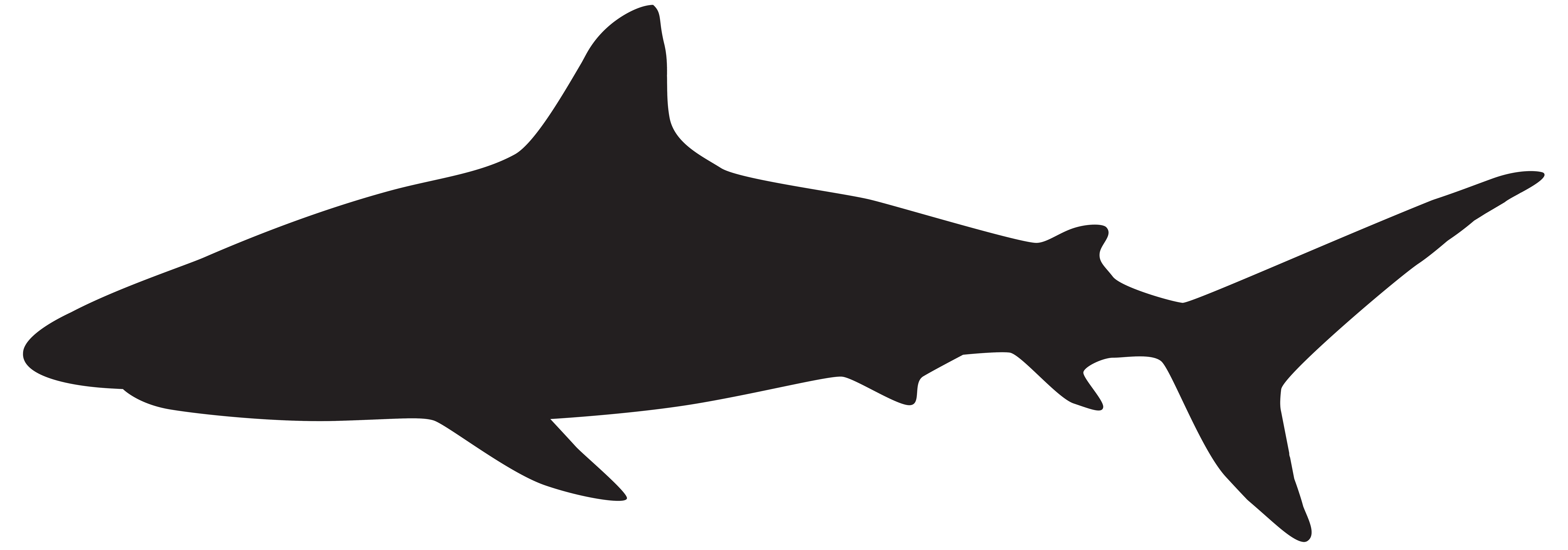 Pin By Jasmine Colon On Projects To Try Shark Silhouette Silhouette Png Shark Images