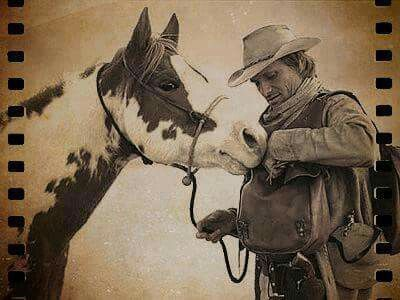 Nobody hurts my horse.  ~ Frank T. Hopkins from the movie, #Hidalgo