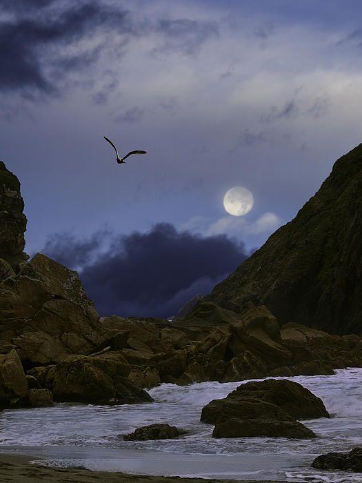 Storm Rising Oregon Coast