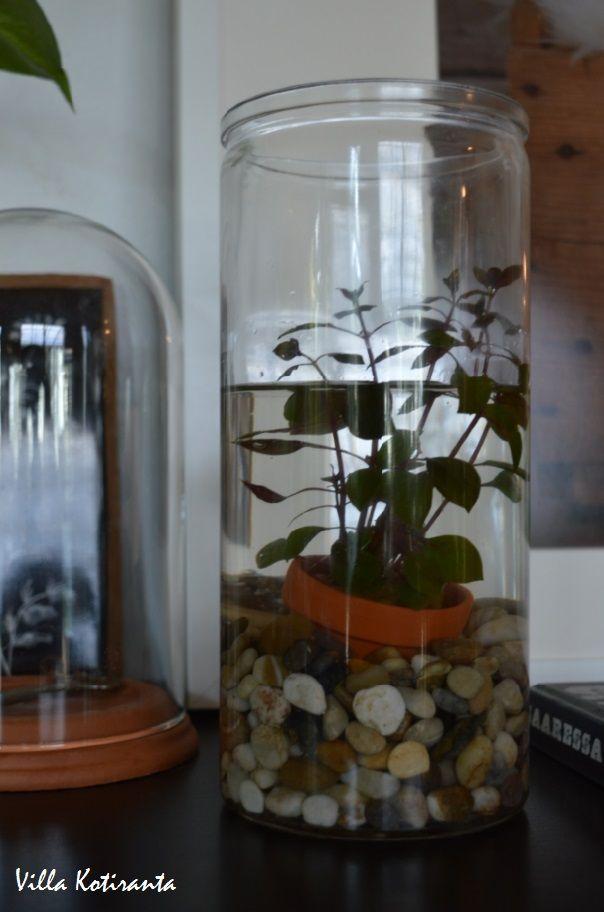 Kuvahaun tulos haulle koristekivet sisustus