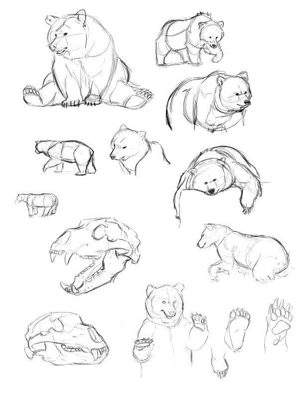 Pin de Dudu L🏹 en Desenhos | Pinterest | Dibujar animales, Dibujar ...