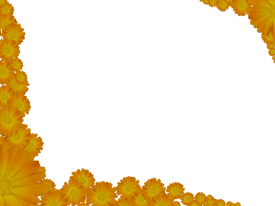 Two Flowery Yellow Corners Border With Transparent