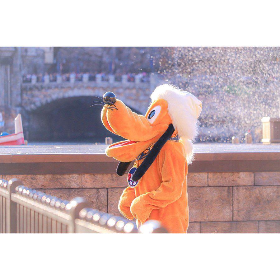 エモいプルート Disney Disneyresort Disneyland Disneysea Tokyodisneyresort Tokyodisneyland Tokyodisneysea Itschristmastime Plu 2020 ディズニーリゾート 東京ディズニーリゾート ディズニー シー