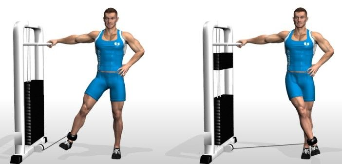 32++ What is hip adduction ideas