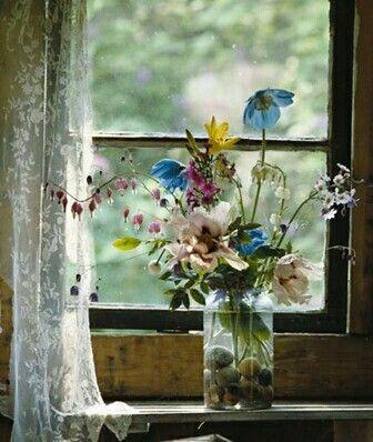 Flowers on the sill   Fiori di lilla, Fotografia di fiori, Fiori
