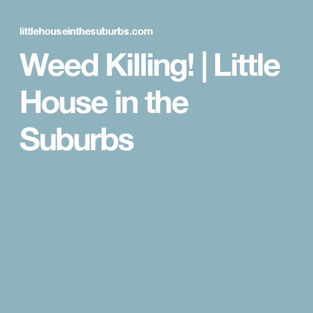 Weed Killing!   Little House in the Suburbs