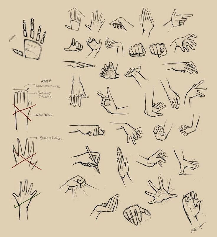 How to draw hands how to draw palmhandshoulder