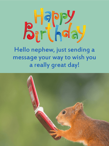 A Message From Squirrel Funny Birthday Card For Nephew Birthday Greeting Cards By Davia Birthday Wishes For Nephew Birthday Wishes Funny Funny Happy Birthday Wishes