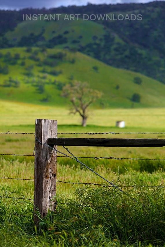 Country Fence Background Backdrop Green Meadow Landscape Backrop Instant Download Digital Stock Photography Beautiful Scenic Wall Art Large