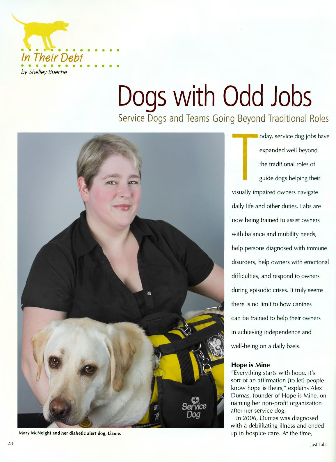 In The Media Diabetic Alert Dog University Videos About