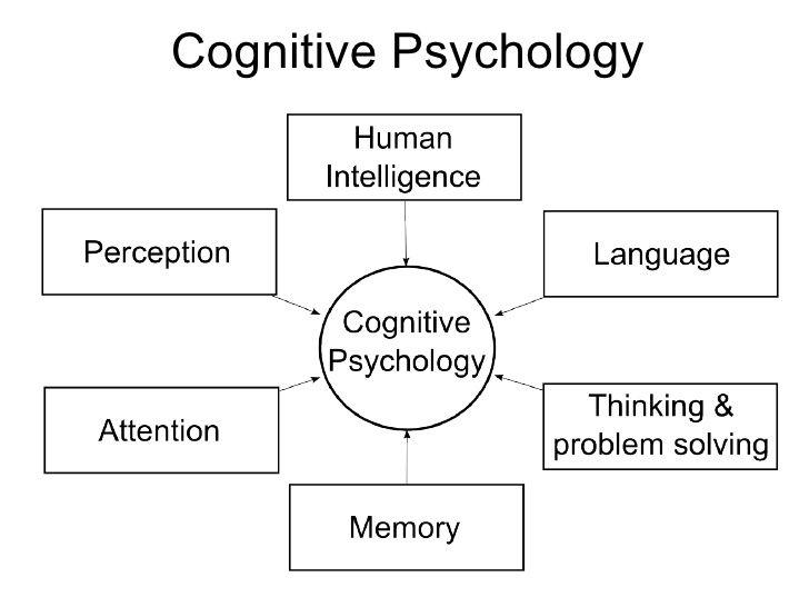 Psychology 102 Cognitive Processes Psychology Ap Psychology