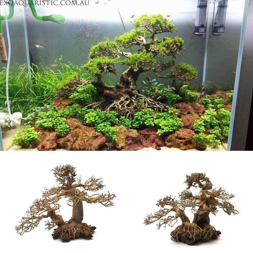Large Bonsai Driftwood Aquarium Tree Handcrafted Fish Tank