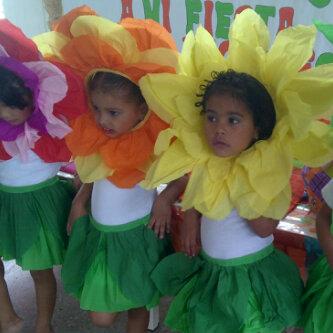 Cajitas De Sueños Disfraz De Flores Disfraz De Primavera Niño Disfraces De Pajaros Disfrases Para Niñas