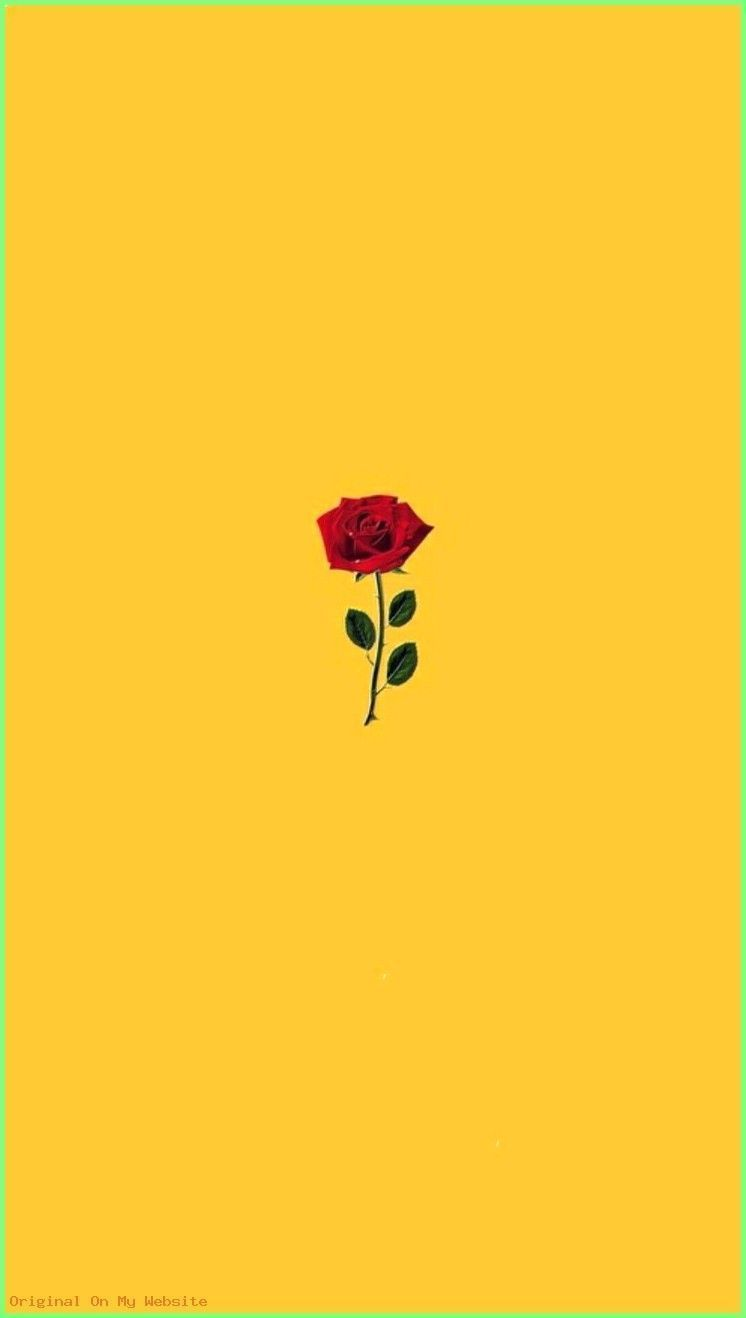 11 Beautiful Sunflower Wallpaper For Iphone Iphone Wallpaper Yellow Aesthetic Iphone Wallpaper Sunflower Wallpaper
