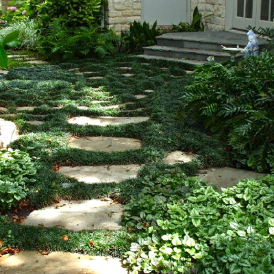 Easy Landscaping Ideas You Can Try: Easy Garden Path Designs You Can Create To Accent Your