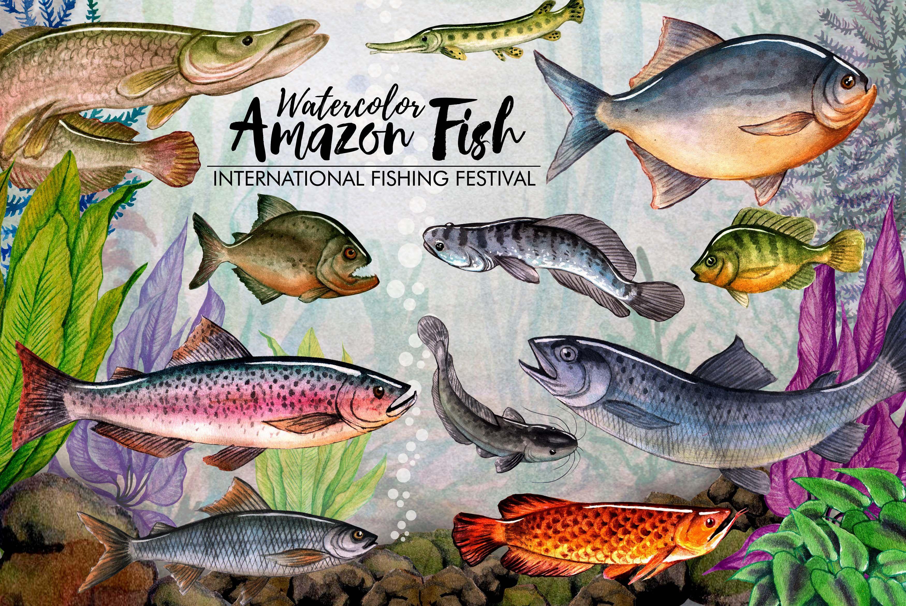 Amazon Fishing Watercolor ปลา