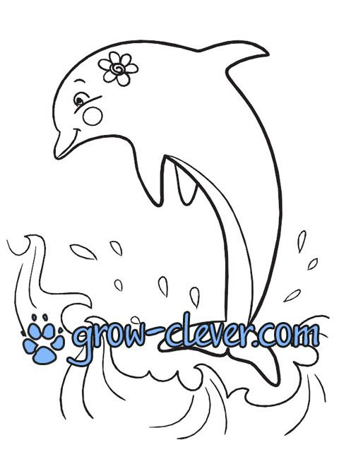 2 раскраски с дельфинами | Coloring pages, Coloring pages ...