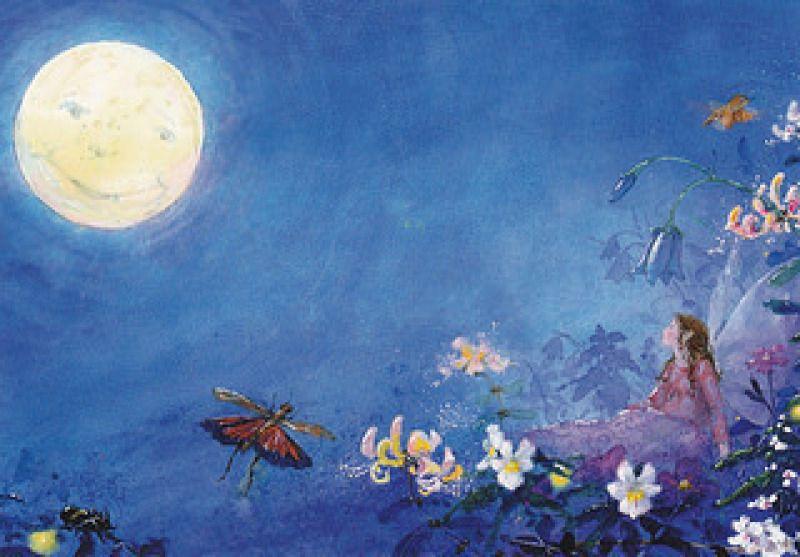 Daniela Drescher: Fairy slaapt niet - Huuto.net