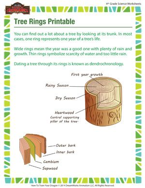 Tree ring dating activity ideas