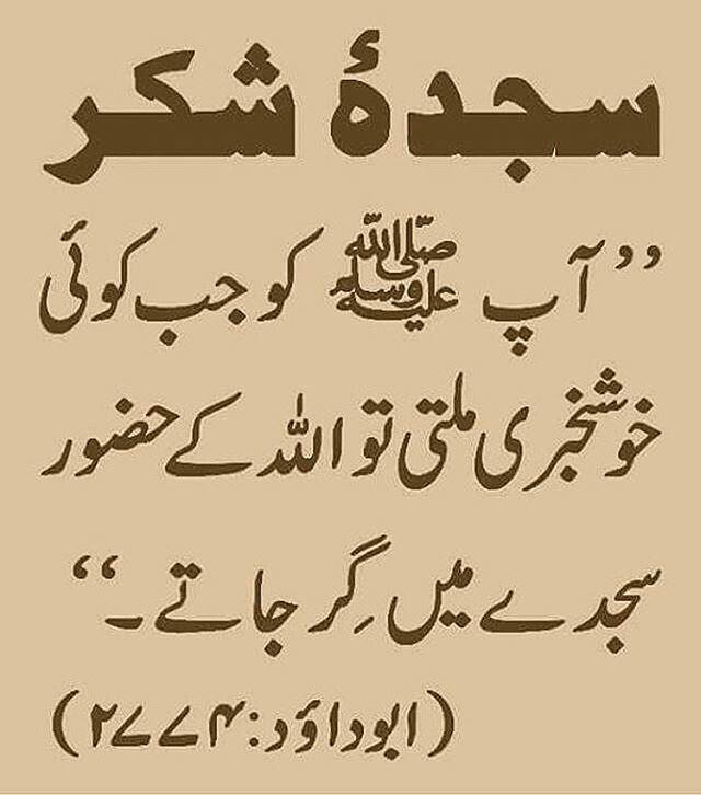 Pin By Asma Mujeer On Voice Of Islam Islamic Inspirational Quotes Islamic Quotes Islamic Love Quotes