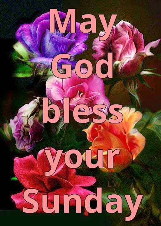 Pin By Bridgette Wright On Sunday Blessingsgreetings Morning