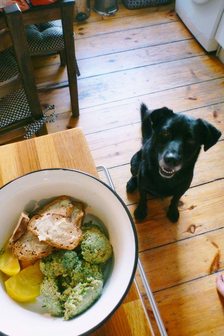 Soybeandumpling With Rutabaga And Toasted Bread For The Vegan Dog Sojabohnennocken Mit Steckruben Und Mit Bildern Veganes Hundefutter Hundefutter Hunde Futter