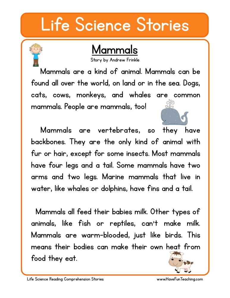 This Reading Comprehension Worksheet Mammals is for teaching – Mammals Worksheet