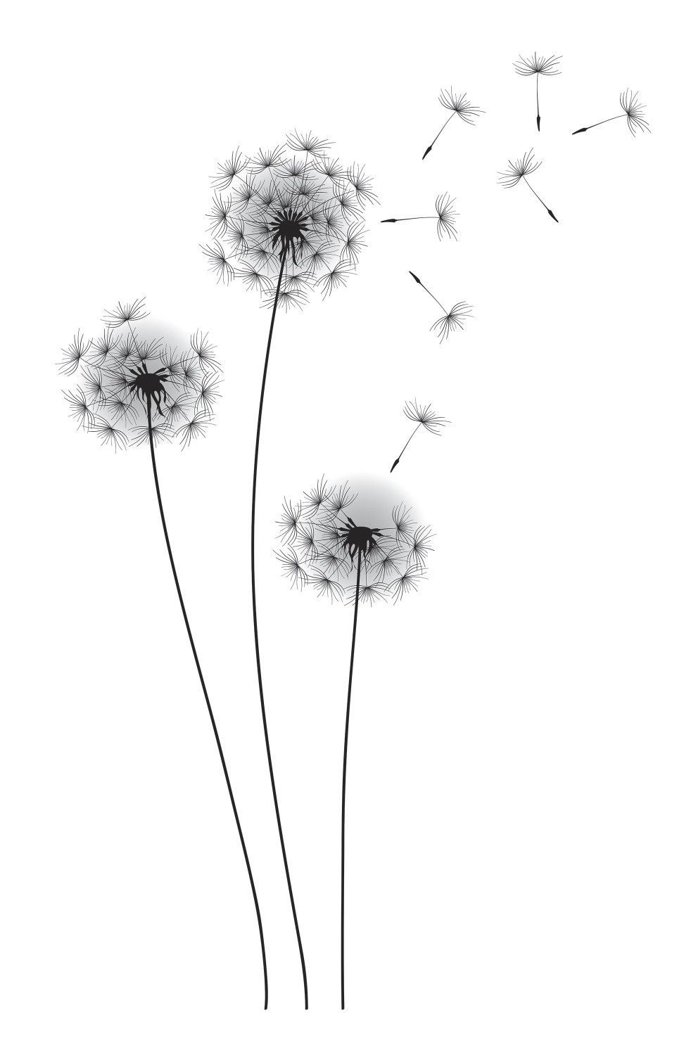 Whimsical Dandelion Wall Decal Dandelion Drawing Dandelion Wall Decal Dandelion Art