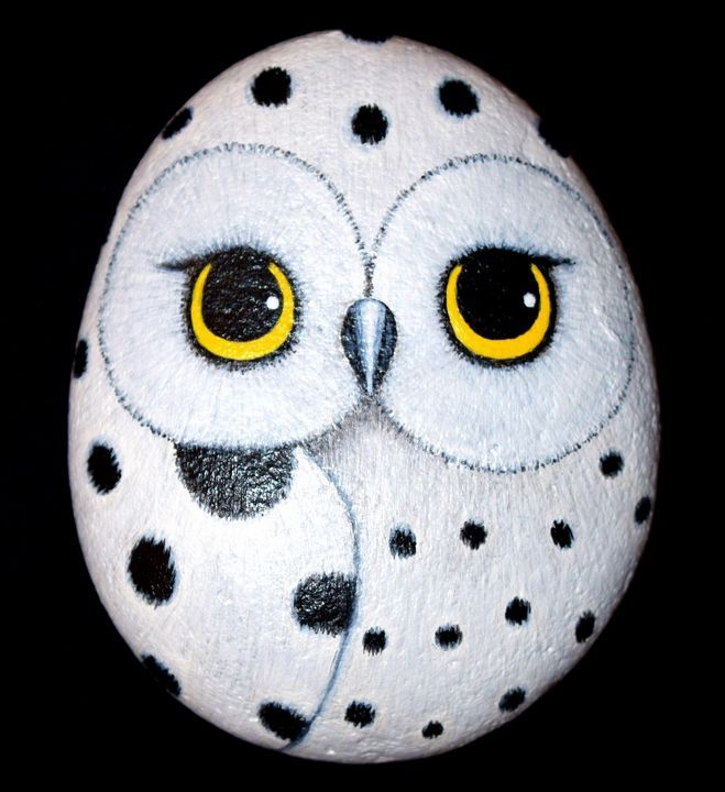 Snowy Owl - PAINTED ROCKS by Sharon Patterson