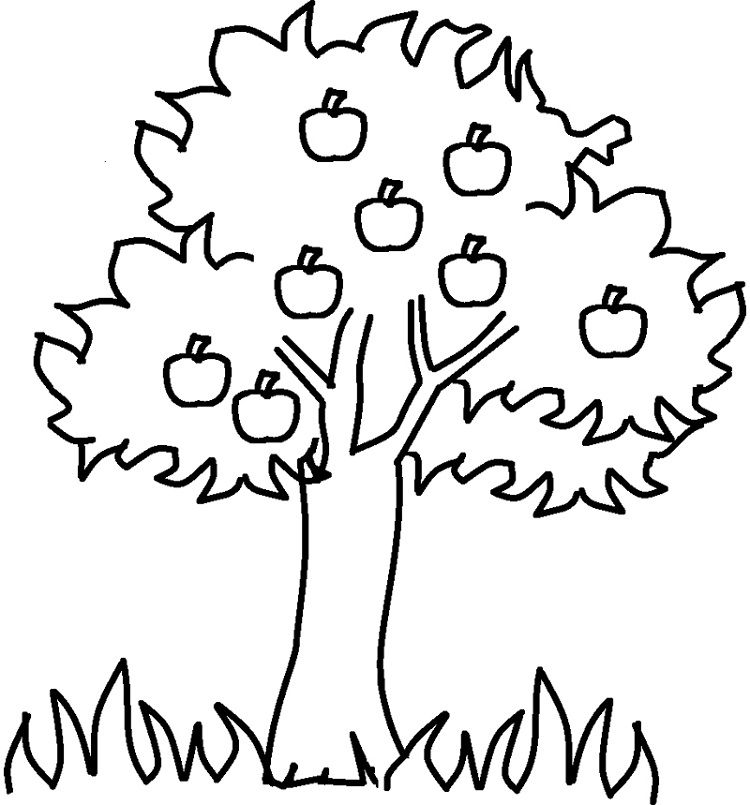 Apple Tree Coloring Pages Coloring Pages For Kids Apple