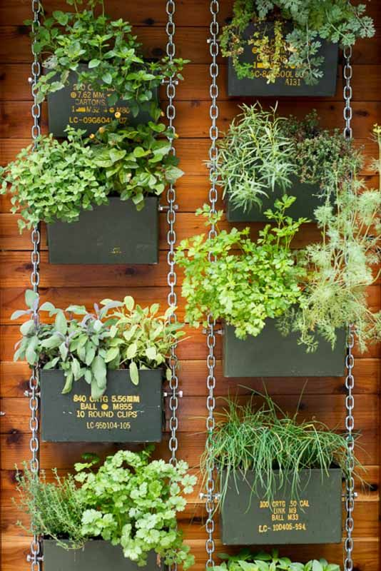 Photo of 53 Best DIY Vertical Garden Ideas!