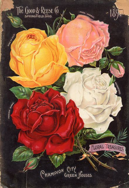 Early American Gardens: Historic American Seed and Plant Catalogs from Smithsonian Institution Libraries