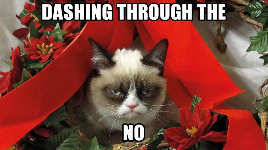 Funny Christmas Music Meme : Signs you re celebrating christmas too early grumpy cat