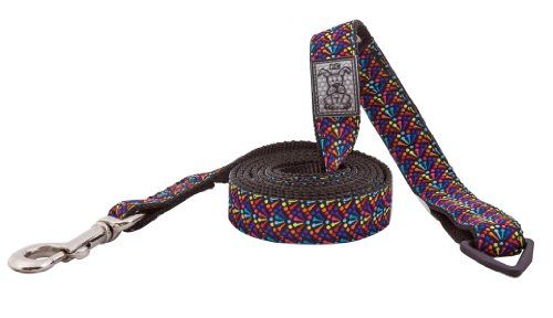 RC Pet Products Dog Leash 1Inch by 6Feet Rainbow * See