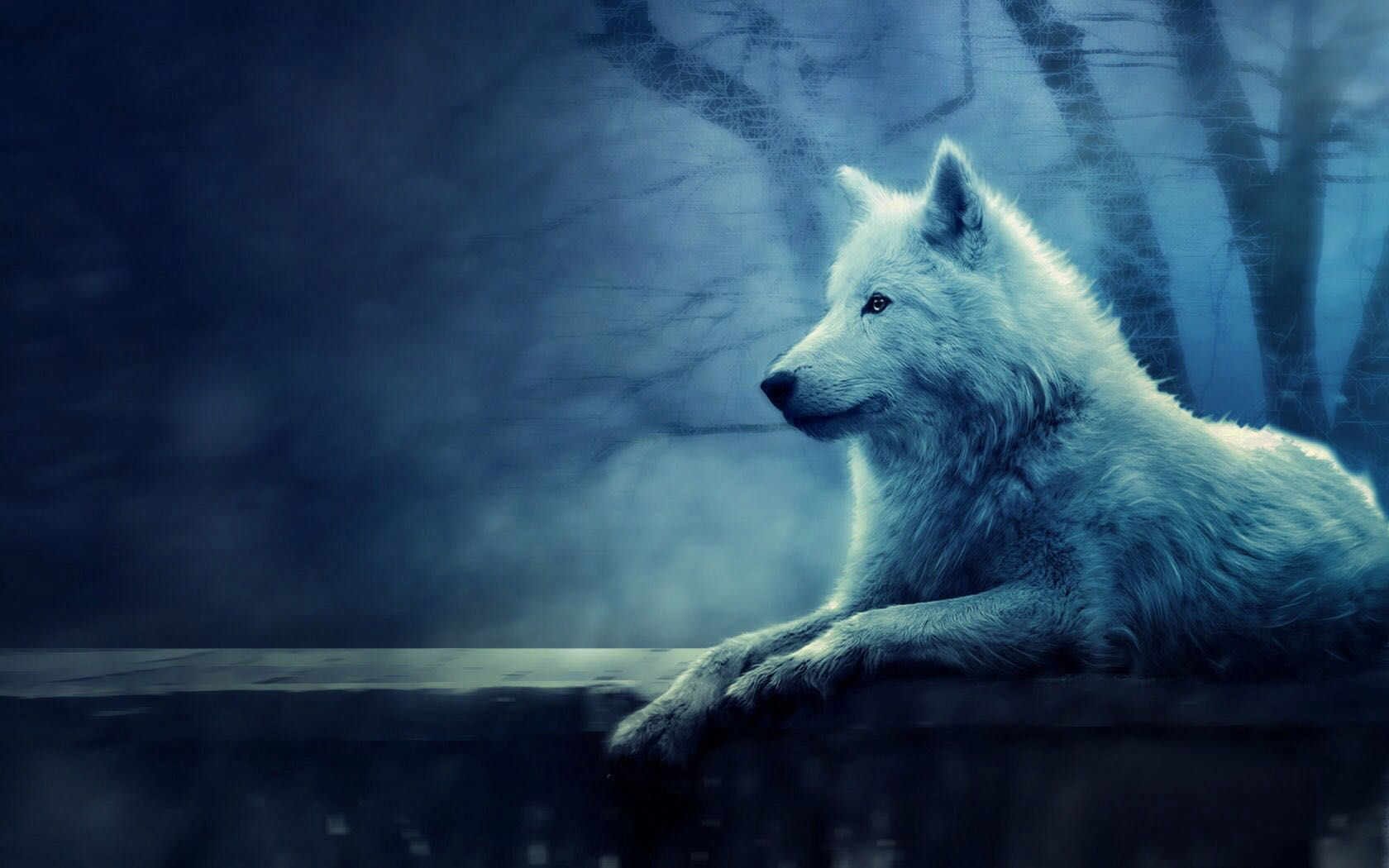 The White Wolf (boyxboy) Prologue Wolf + Fox Creations