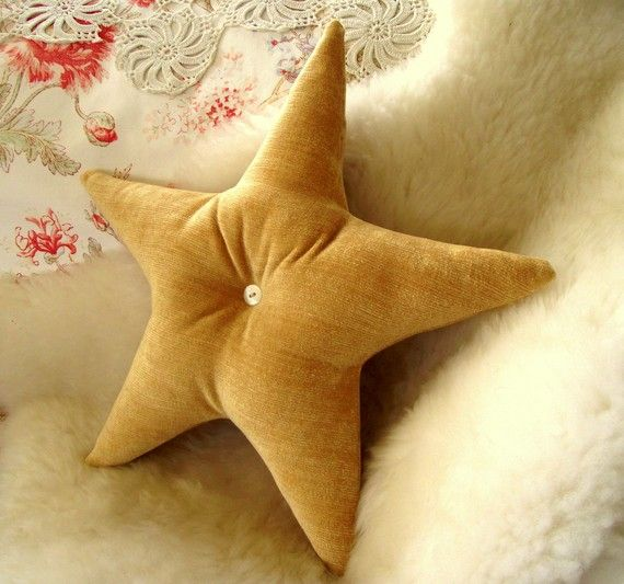 starfish... what about a sand dollar