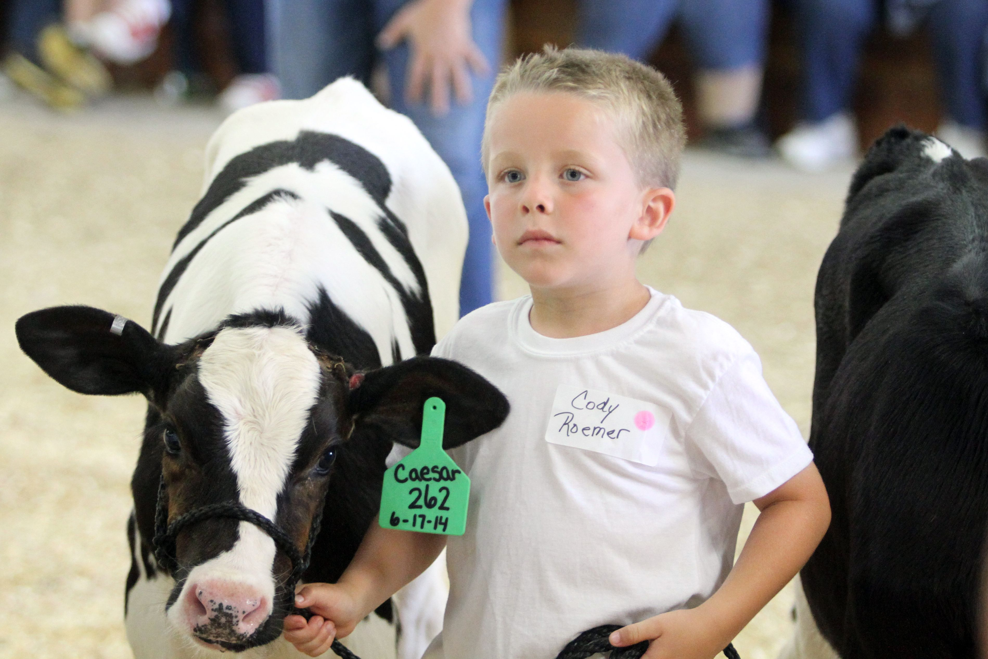 Contestants demonstrate their showmanship abilities by