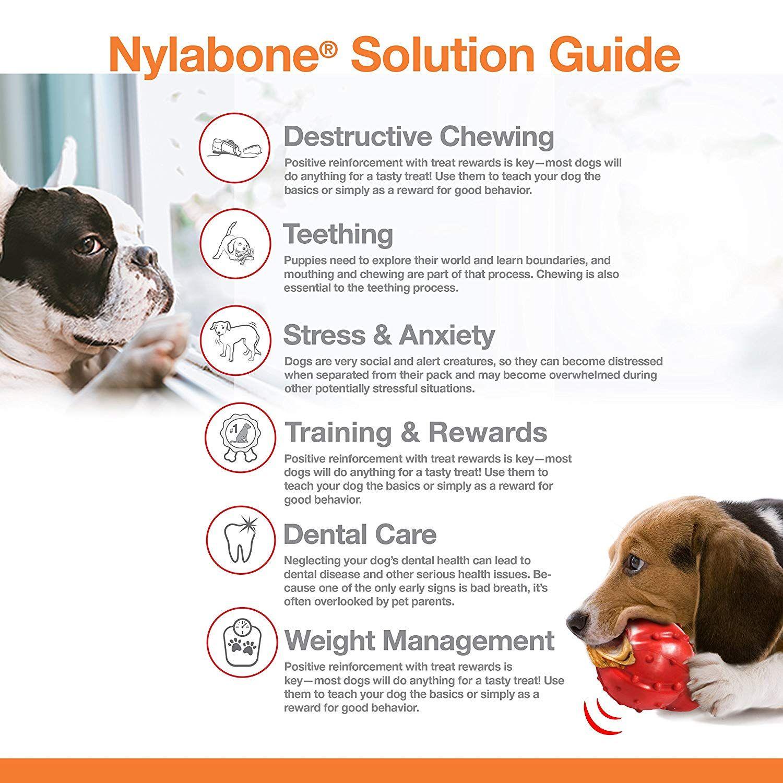 Nylabone Stuffable Dog Toy For More Information Visit Image