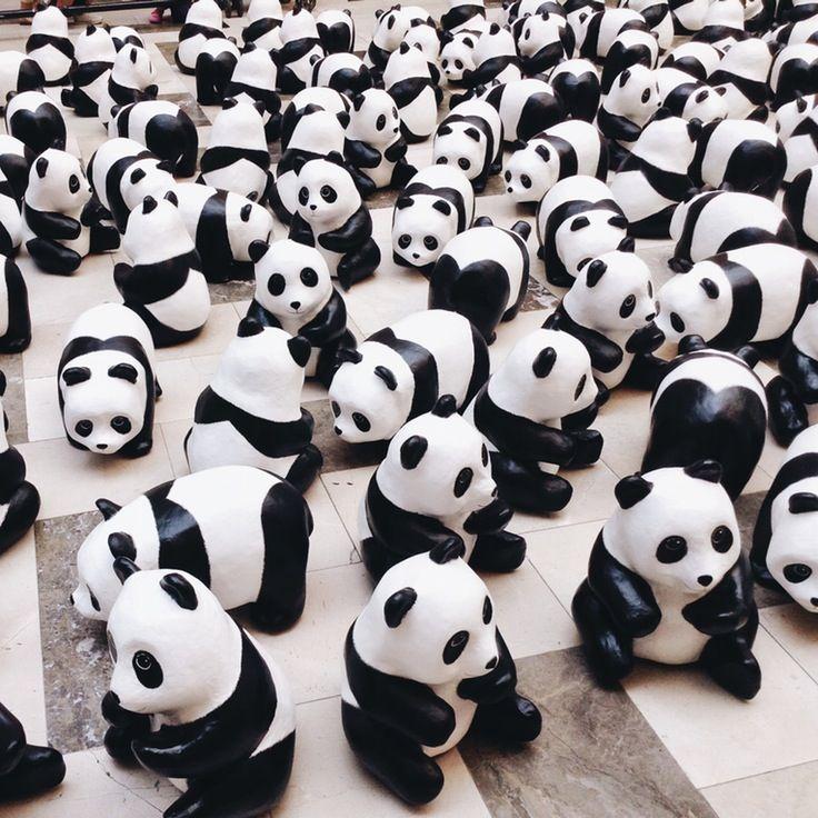 Pandasssssss