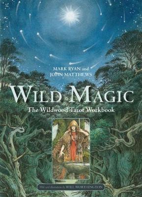 Into the wild book pdf