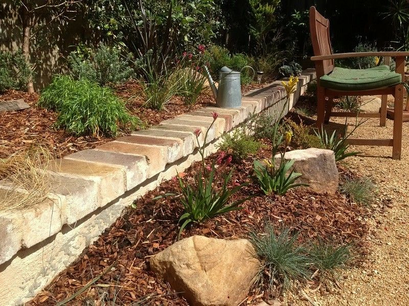 Australian Native Courtyard Garden Landscapers Sydney